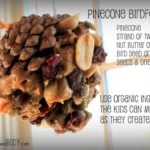 DIY Pinecone Bird Feeders