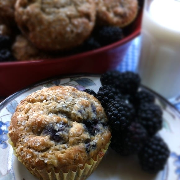 maple blackberry muffins