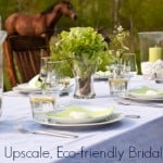 Celebrating the joining of two people is a beautiful thing. Make it even better with an eco-friendly bridal shower that's good for her and the planet.