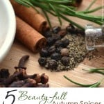 5 Beauty-full Autumn Spices