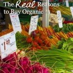 Refuting the Stanford Organic Food Study: The REAL Reasons to Buy Organic