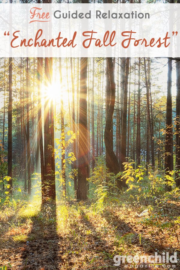 Enchanted Fall Forest Guided Relaxation Script