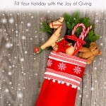 Good For Goodness' Sake: Fill Your Holiday with the Joy of Giving