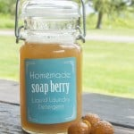 Soap-Berry-Liquid-Detergent-Recipe copy