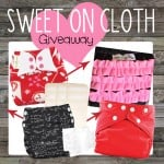 Sweet on Cloth Giveaway