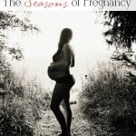 The Seasons of Pregnancy