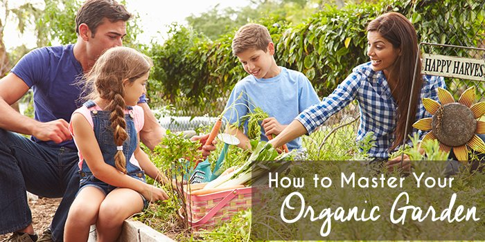How to Master Your Organic Garden