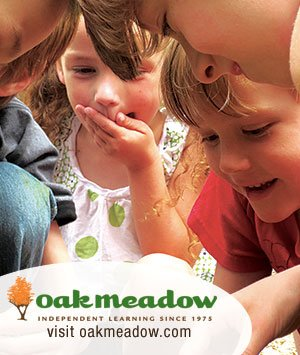 Oak Meadow Flexible Homeschooling Curriculum
