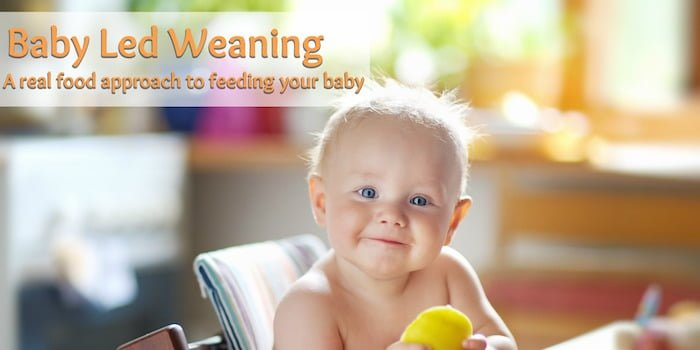 Baby Led Weaning: A Real Food Approach to Feeding Your Baby