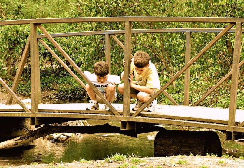 Childhood simplified. Adorable young boys on a bridge enjoying the simplicity of nature