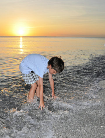 little boy at the beach at sunset