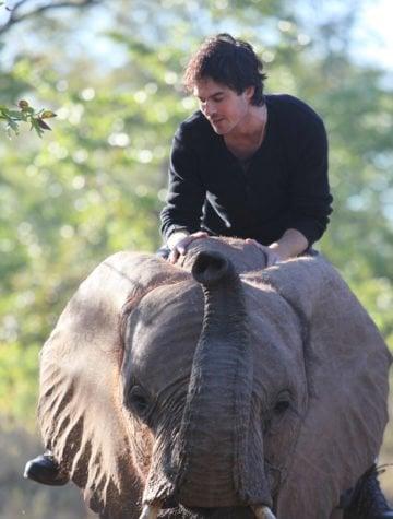 The more you know eco: Ian Somerhalder Foundation