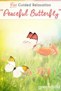 Peaceful Butterfly Guided Relaxation script for kids
