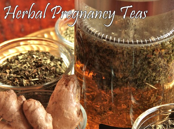 Herbal Teas for Pregnancy - morning sickness and overall health