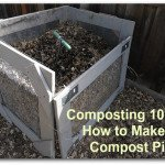 Composting 101: How to Make a Compost Pile