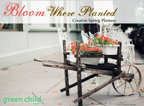 Creative ideas for spring planting