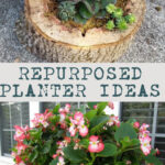 Repurposed Planter Ideas pin
