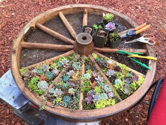Creative repurposed flower planters