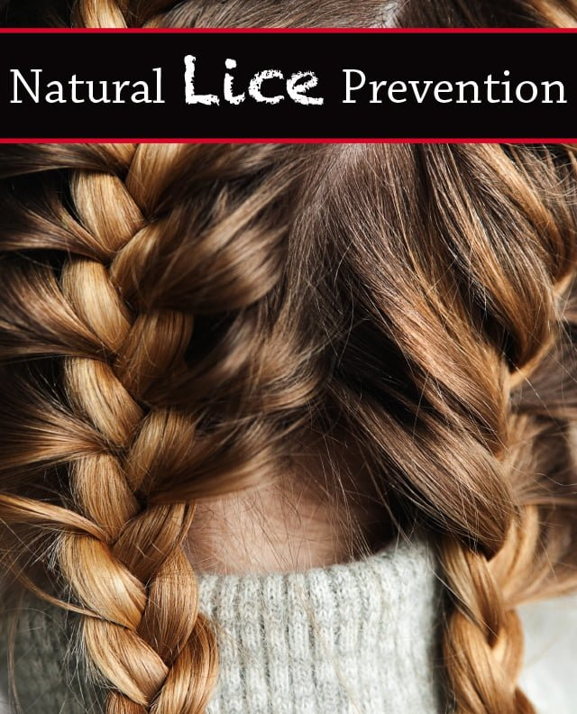 Ticks Natural Prevention And Remedies