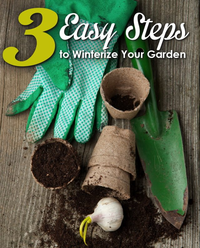 Preparing Your Garden for Winter: How to Winterize Your Garden in 3 Simple Steps