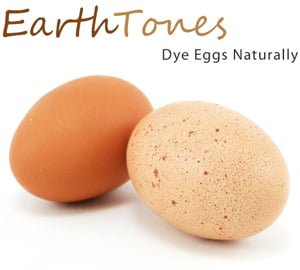 Earth Tones: Dye Eggs Naturally