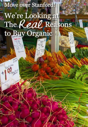 For most of us, any nutritional advantage to organic food is simply the icing on the cake. The main reasons to choose organic range from personal safety… to social justice… to environmental stability for future generations. Here are five solid reasons to buy organic that – for whatever reason - Stanford either slighted or neglected to mention