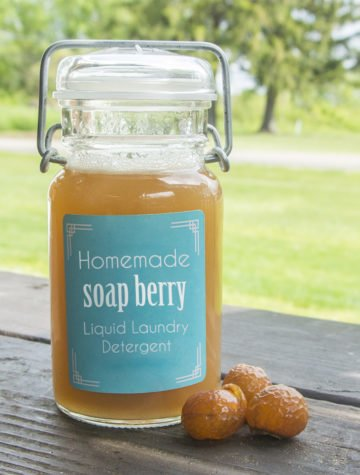 Homemade Liquid Soap Nuts Laundry Detergent