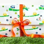 Gift It Green Reusable Fabric Gift Boxes