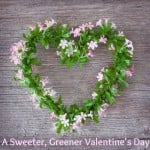 A Sweeter, Greener Valentine's Day