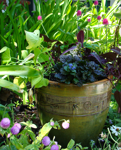 The Beauty of Container Gardening