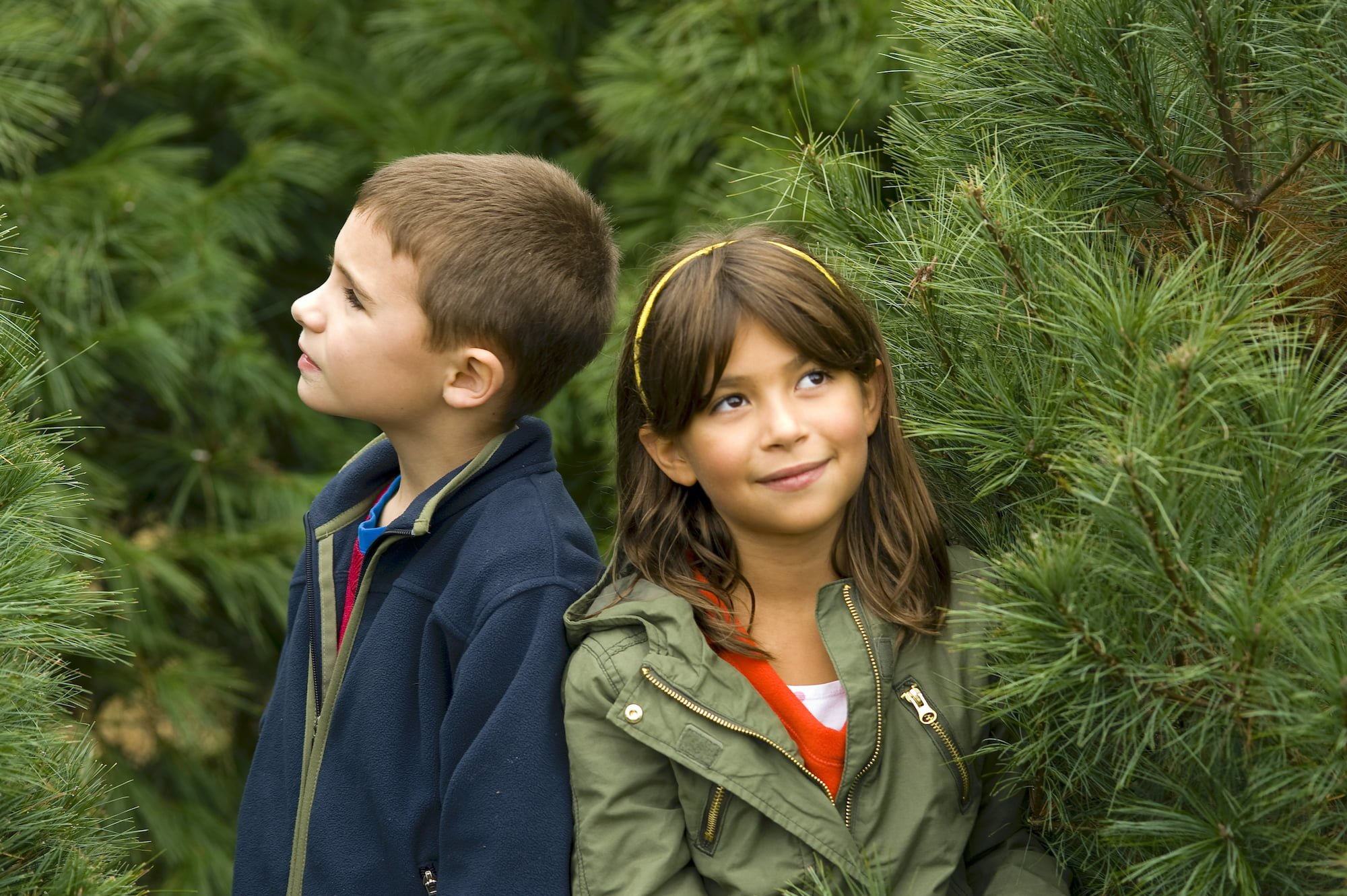Children on Christmas tree farrm
