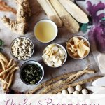 Herbs During Pregnancy: What you can safely use and what to avoid