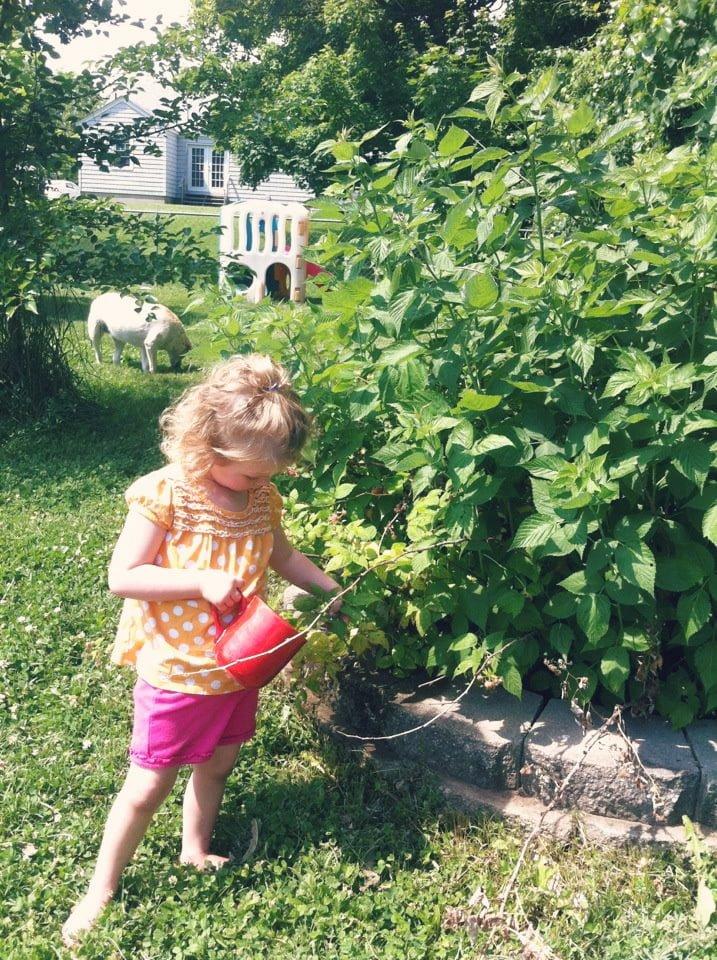 celebrating summer solstice with kids