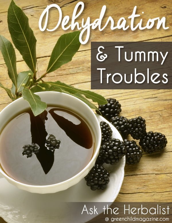 Dehydration & Tummy Troubles: Master herbalist, Susie Lyons, shares natural, home-care tips to prevent dehydration when your child has a stomach bug.