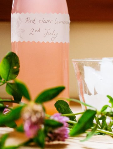 Red Clover Lemonade Recipe