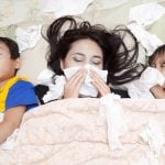Coping With Colds: The Best Herbs For Cough, Congestion, And Infection