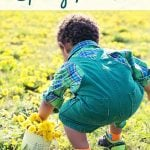 Guided Meditation Spring Renewal