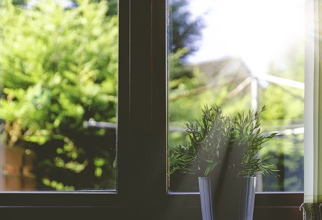3 Simple Ways to Start Reducing Toxins in the Home