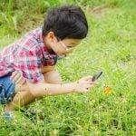 Outdoor Activity: Backyard Bug Count