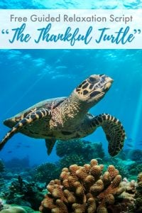 In this guided relaxation, your child will meet The Thankful Turtle. He's here to remind us of all the things we have to be thankful for, even when our days are sometimes rough.