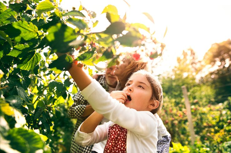 How You Can Protect Your Child From Pesticide Exposure