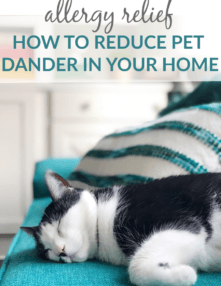 Allergy Relief - How to reduce pet dander in your home