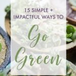 Succulents in a graphic about the top 15 ways to go green