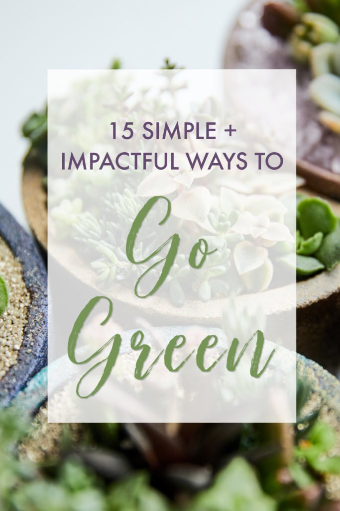 Succulents and graphic with 15 simple and impactful ways to go green