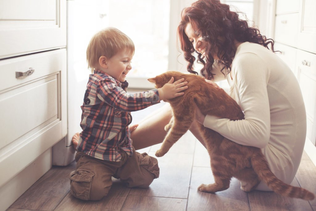 Mother and son playing with cat and relaxing