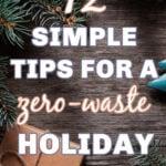 zero waste holiday