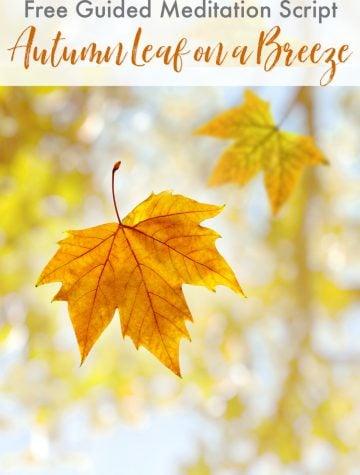 Guided Meditation Script Autumn Leaf