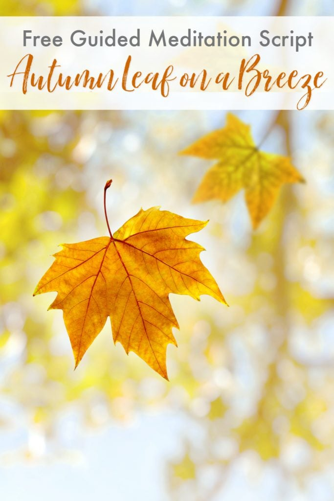 Guided Meditation Script for Relaxation - Autumn Leaf