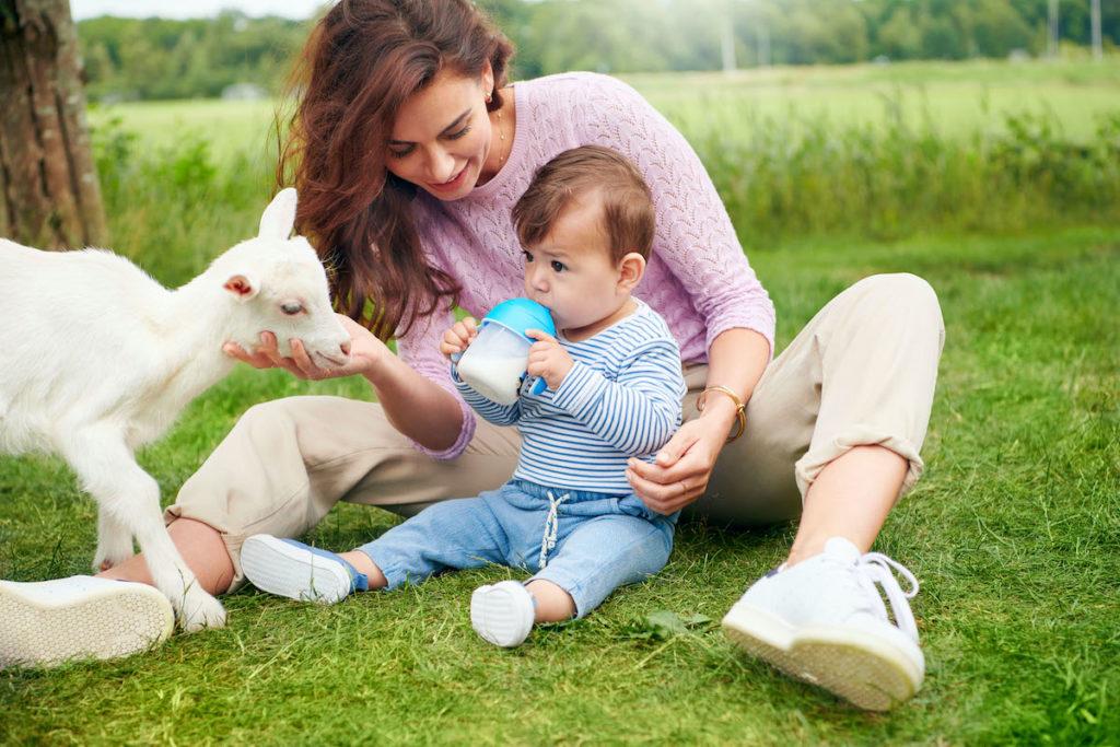 Baby Drinking Kabrita Goat Milk Formula