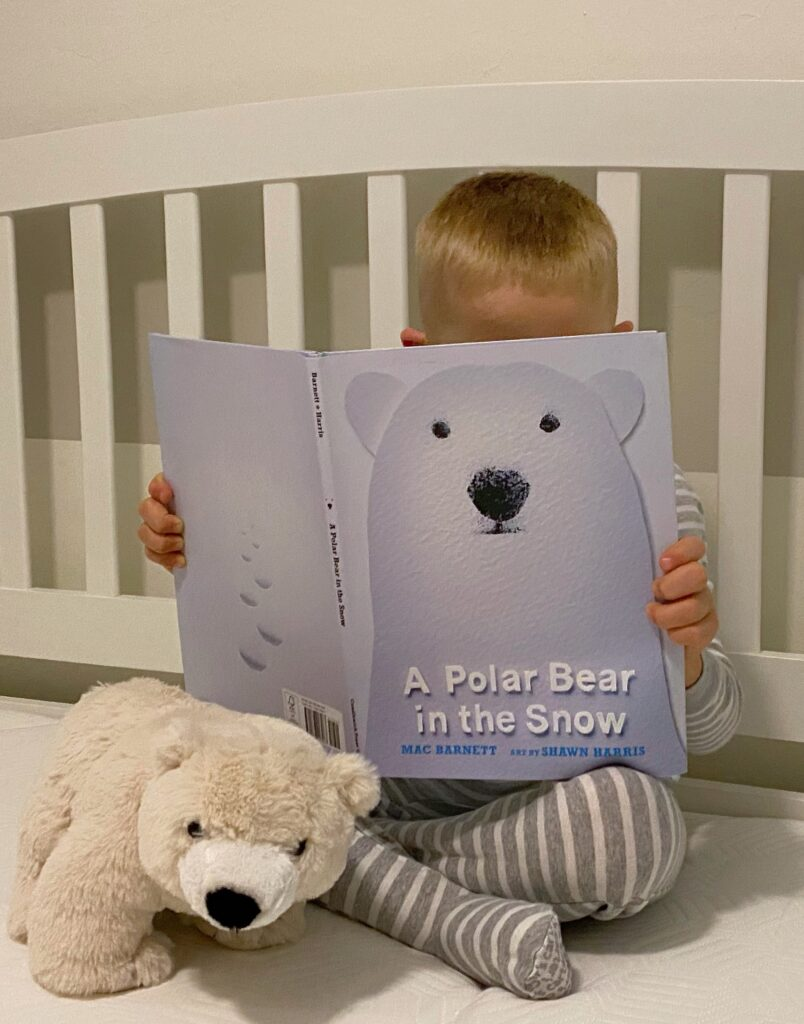 Child reading polar bear in the snow book Green Child Magazine